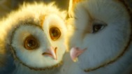 Legend of the Guardians: The Owls of Ga'Hoole - Trailer